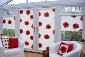 Domestic rollers and blinds